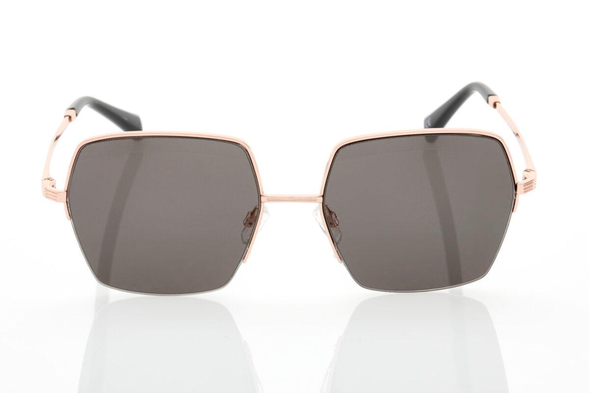 Female Sunglasses Hawkers Erebia Dark